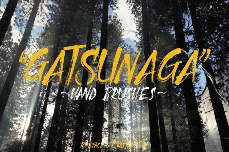 gatsunaga-hand-brushes