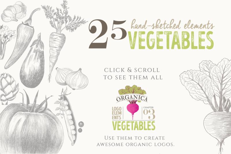 organic-logo-elements-vegetables