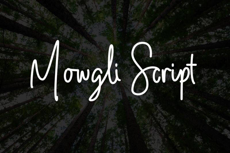 mowgli-script