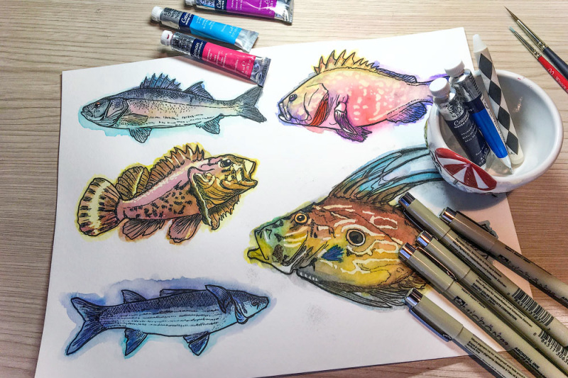 watercolor-fish-clipart-big-collection-limited-time-offer-1-normally-10