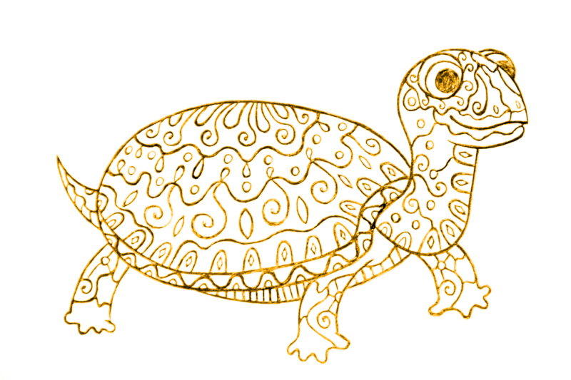 a-picture-of-a-turtle-with-ornament-sketch-by-hand-of-a-ballpoint-pen-the-archive-contains-6-jpeg-300-dpi-on-white-background-6-png-transparent