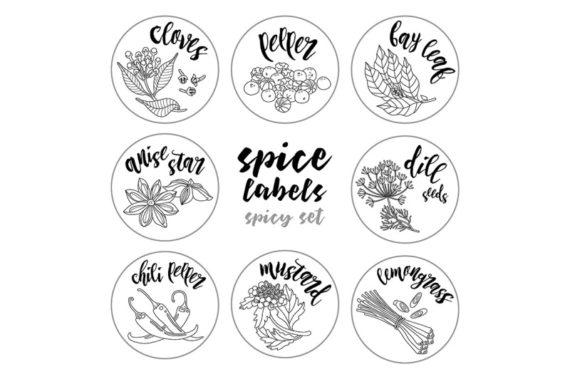 spices-and-herbs-labels-set