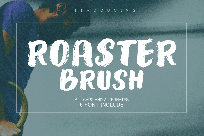 roaster-brush-collection