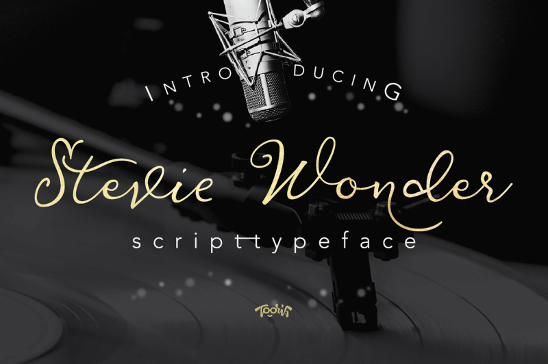 stevewonder-script