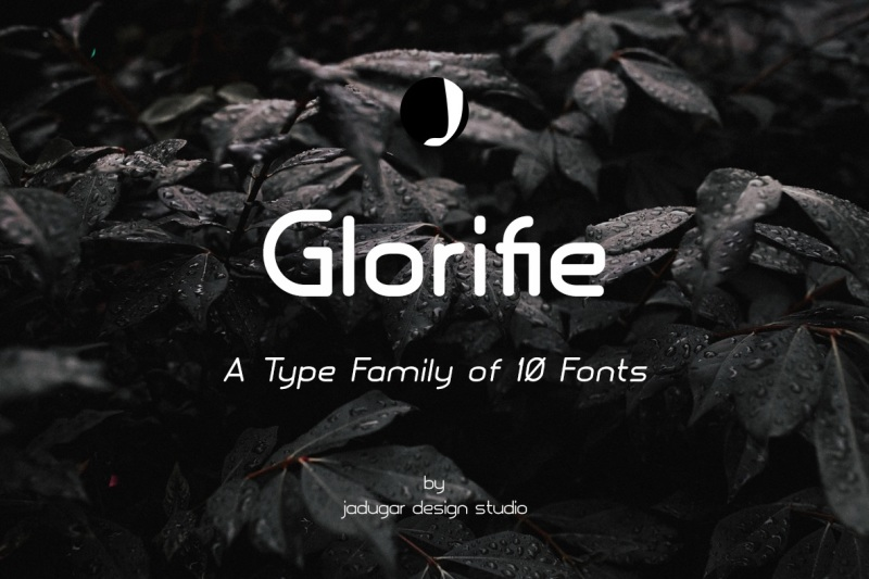 best-font-bundle