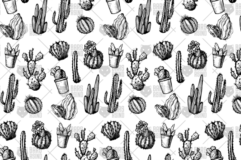 mexican-cactus-pattern