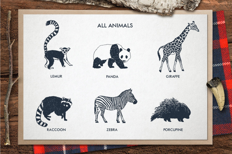 zoonimals-hand-drawn-animals