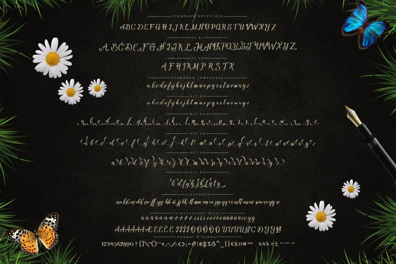 amandella-script