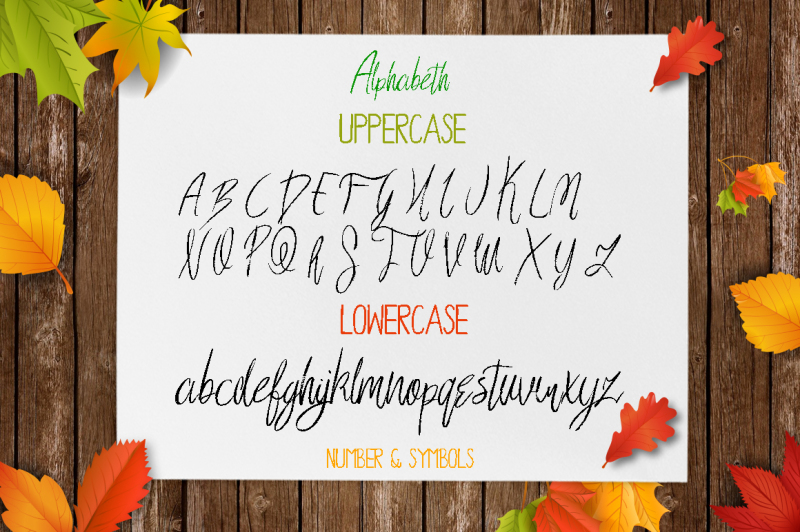qillimition-script-font