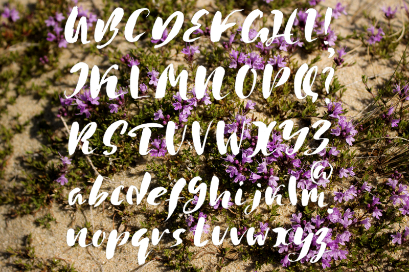 handwritten-grunge-fonts-trio
