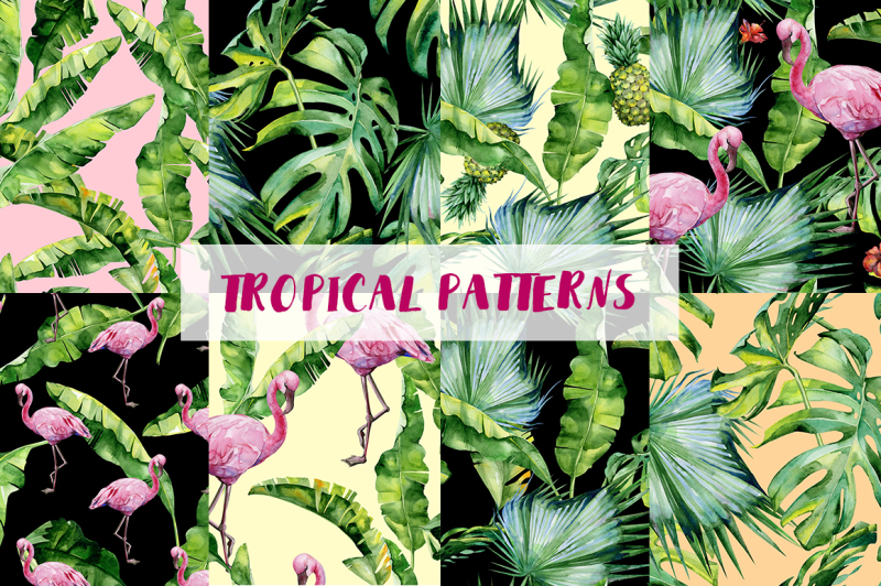 big-set-of-tropical-patterns