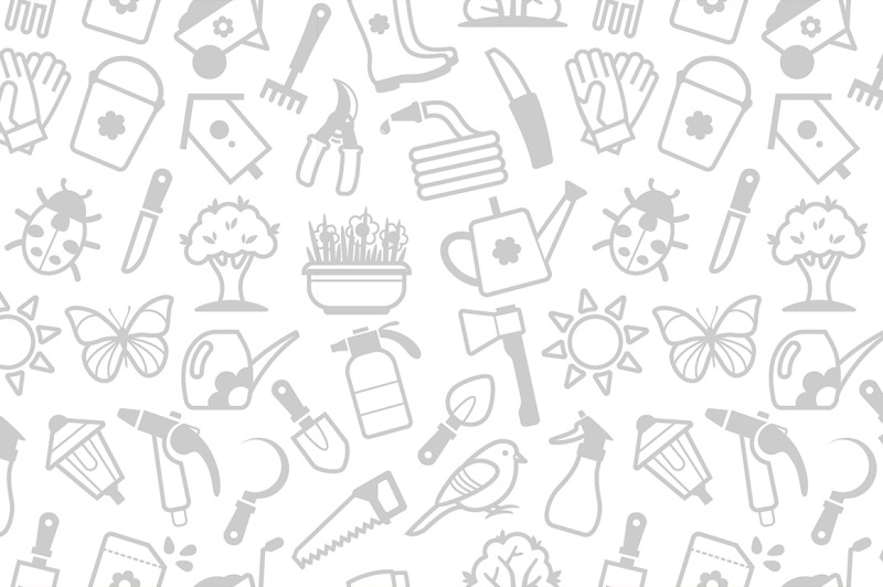 garden-tools-icons-and-patterns
