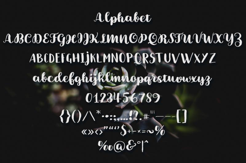 brushery-font-duo