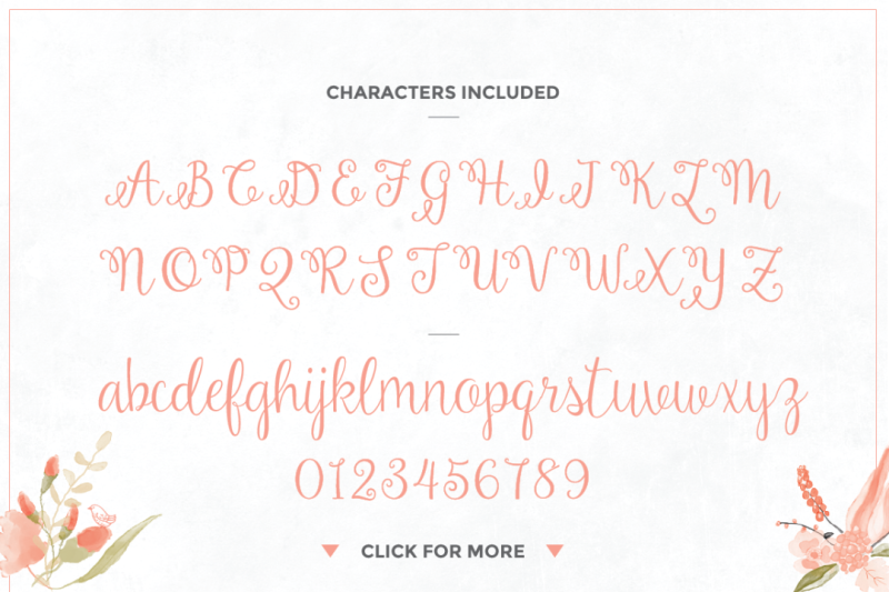 amelia-script