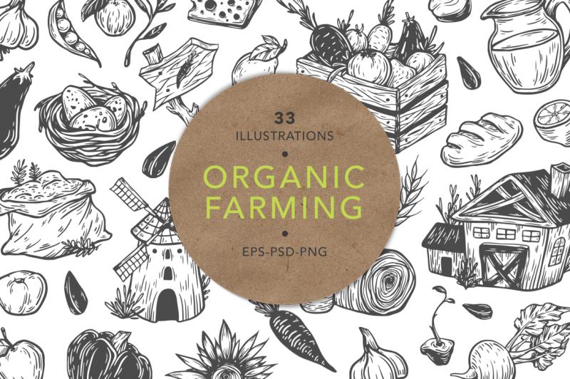 organic-farming-fresh-market