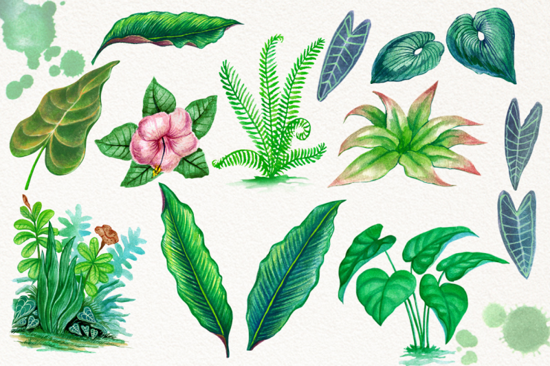watercolor-tropical-leaves-in-the-jungle