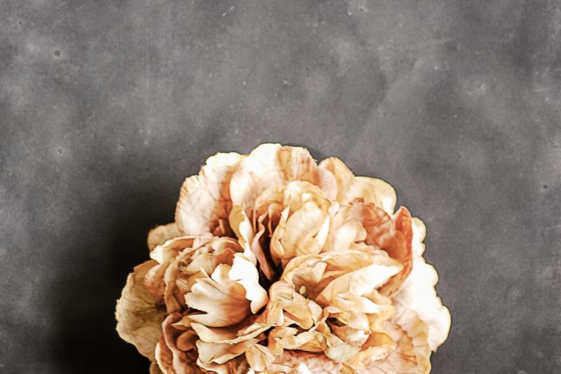 floral-bloom