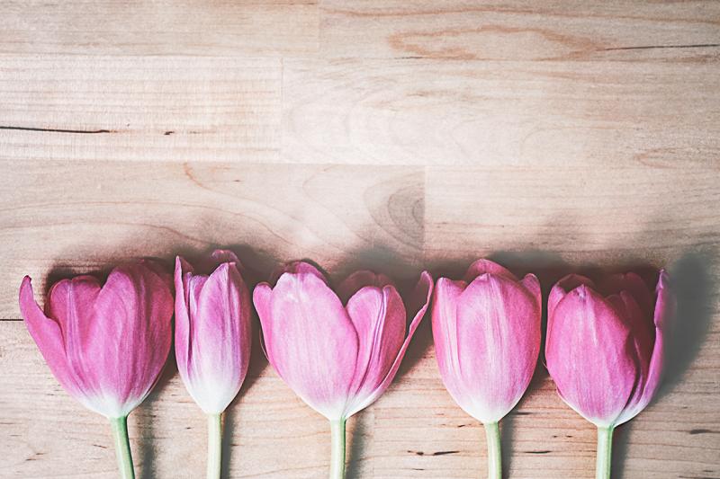 pink-tulips-on-wood-v-2