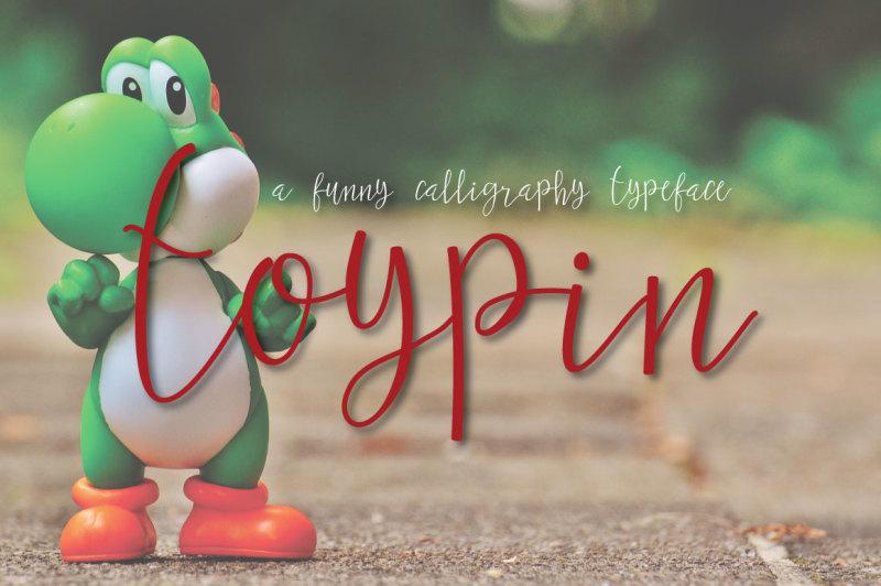 toypin-typeface