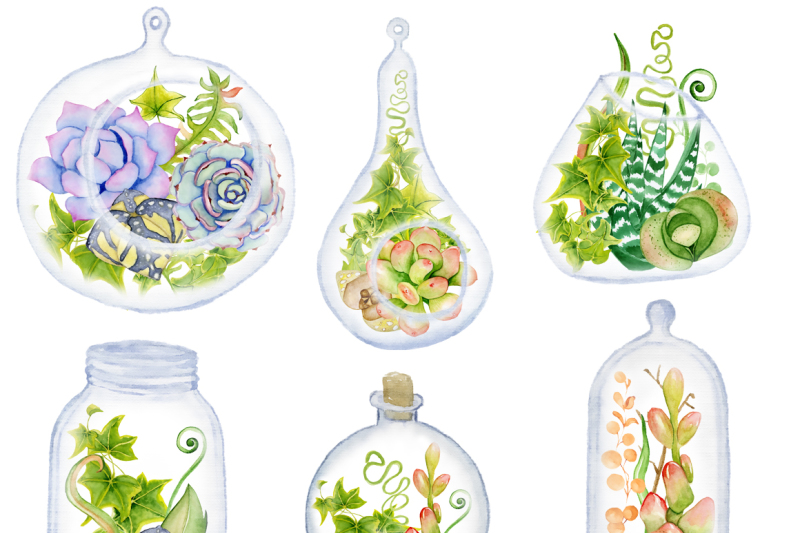 watercolor-succulents-and-cactus-glass-terrariums-creator-cactus-clipart-hand-painted-clipart-succulents-clip-art