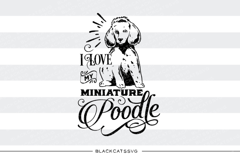 i-love-my-miniature-poodle-svg