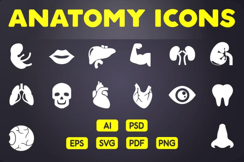 glyph-icon-human-anatomy-icons