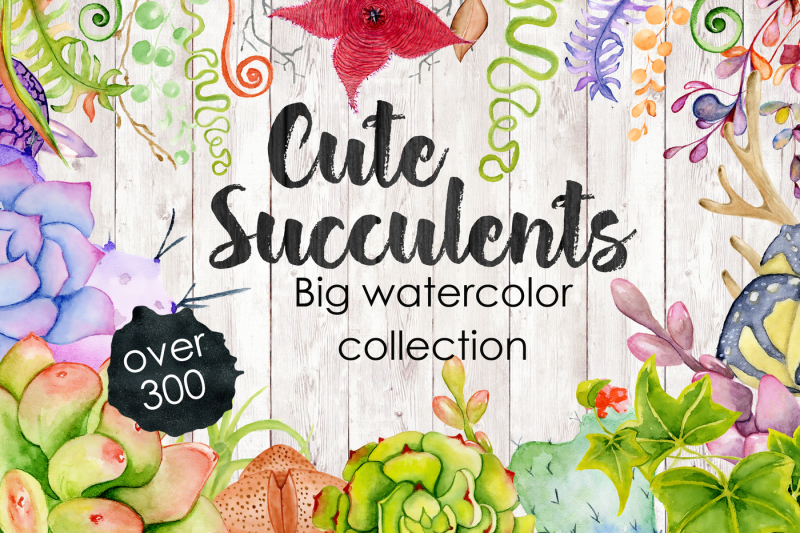 spring-sale-bundle-80-percent-off