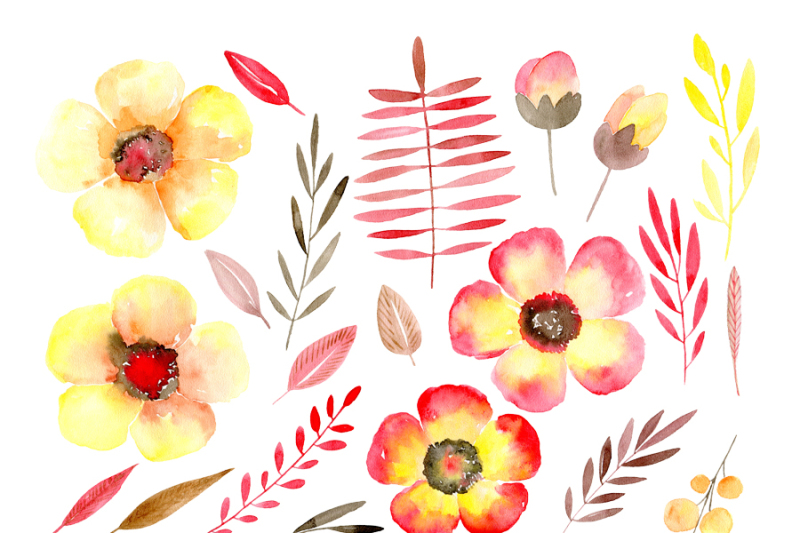watercolor-yellow-and-red-flowers