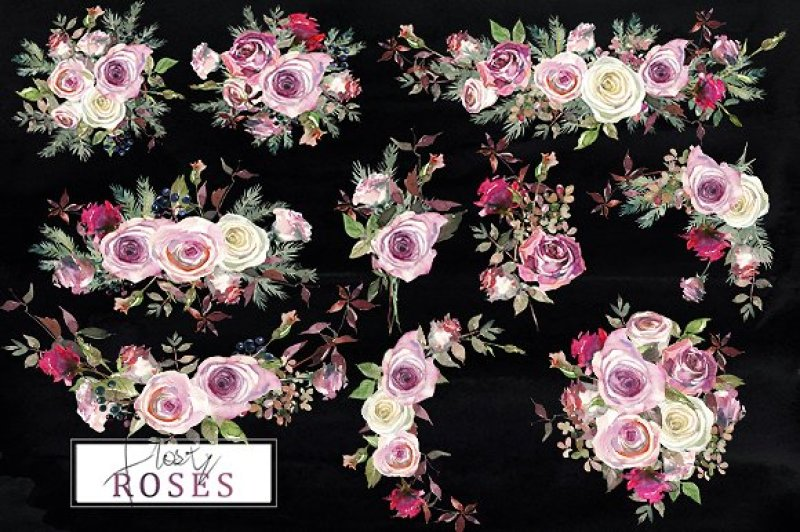 frosty-roses-watercolor-flowers-pink-purple-white-roses-collection