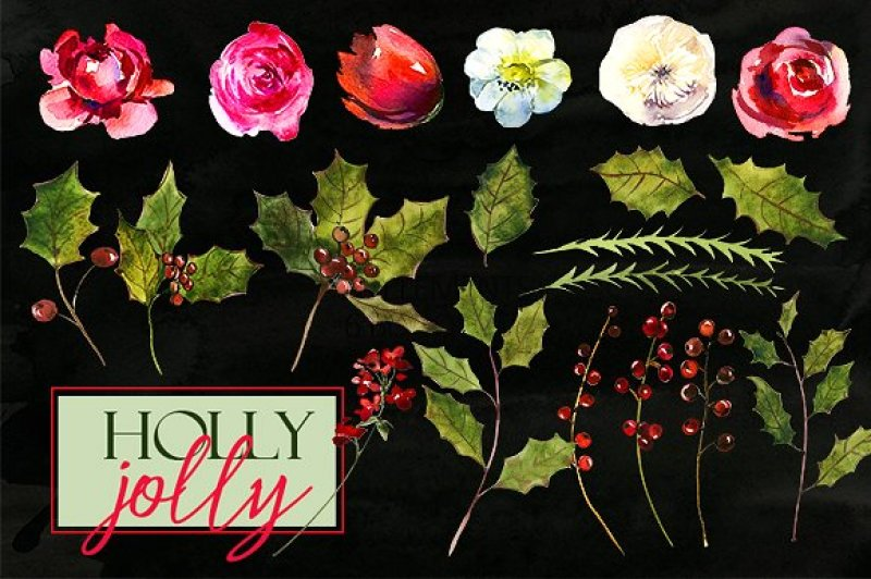Holly Steams Christmas Floral Watercolor Clipart By