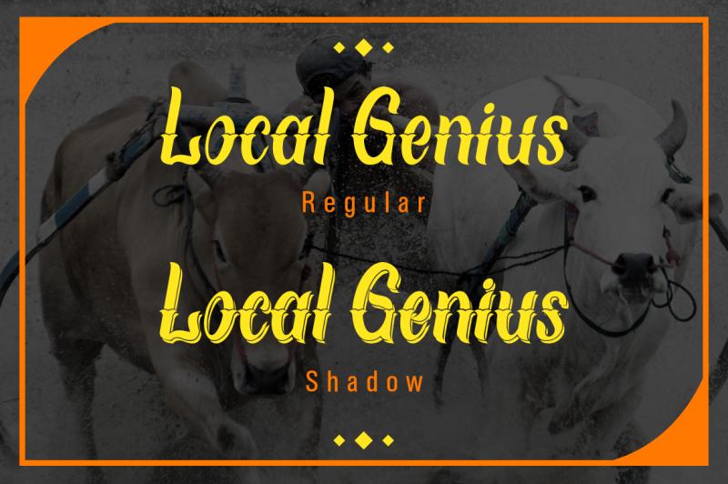 local-genius-typeface