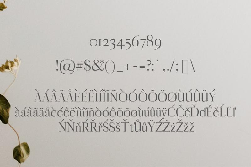 myron-serif-typeface