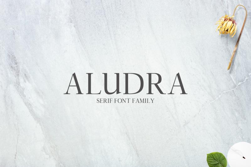 aludra-serif-12-font-family-pack