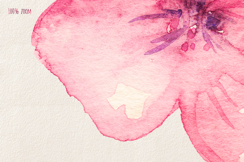 cherry-blossom-watercolor-collection