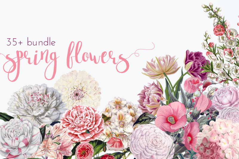 spring-flower-vintage-bundle