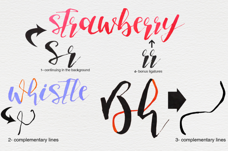 fish-and-sea-typeface-extras