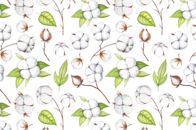 cotton-flowers-handdrawn-set