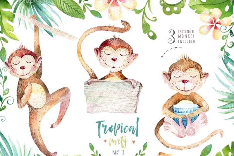 tropical-party-ii-monkey-collection