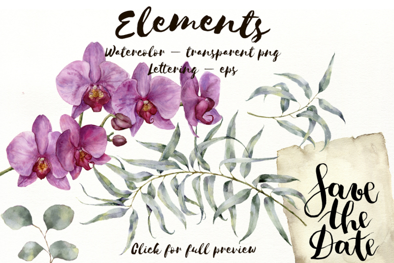 exotic-eucalyptus-and-orchids-watercolor