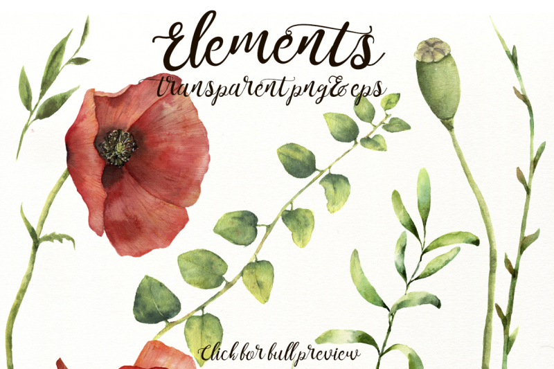 poppies-flowers-in-red-watercolor