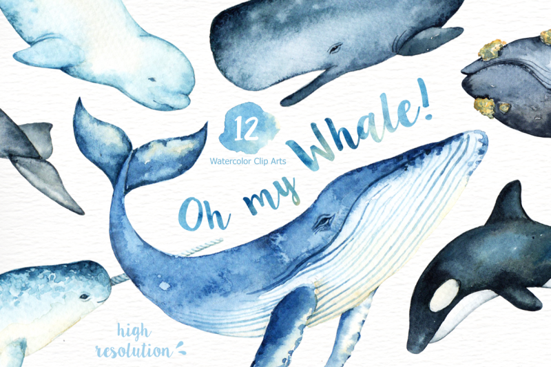 oh-my-whale-watercolor-clip-arts