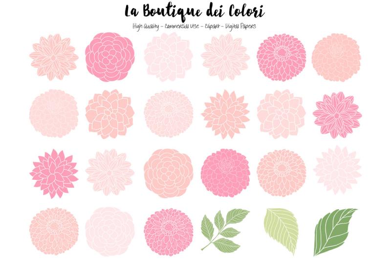 soft-pink-dahlia-flowers-clipart