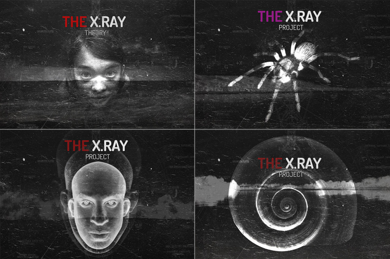 the-x-ray-theory