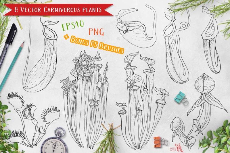 carnivorous-plants-marker-set