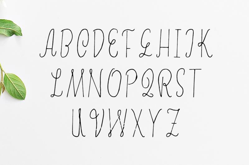 erica-script-font