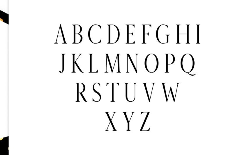 veera-serif-typeface