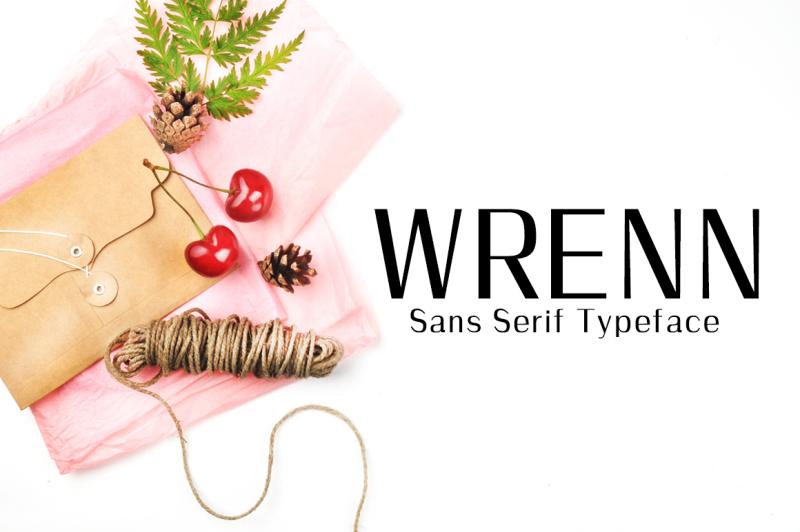 wrenn-sans-serif-6-font-family
