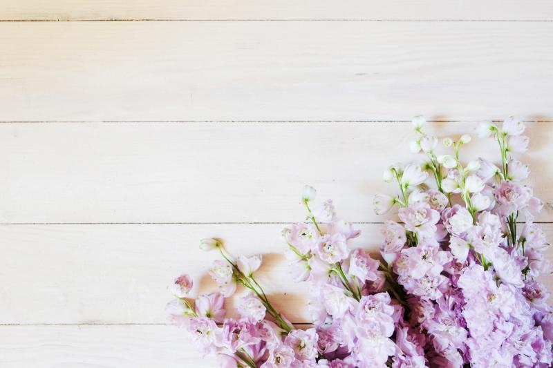 lilac-delphinium