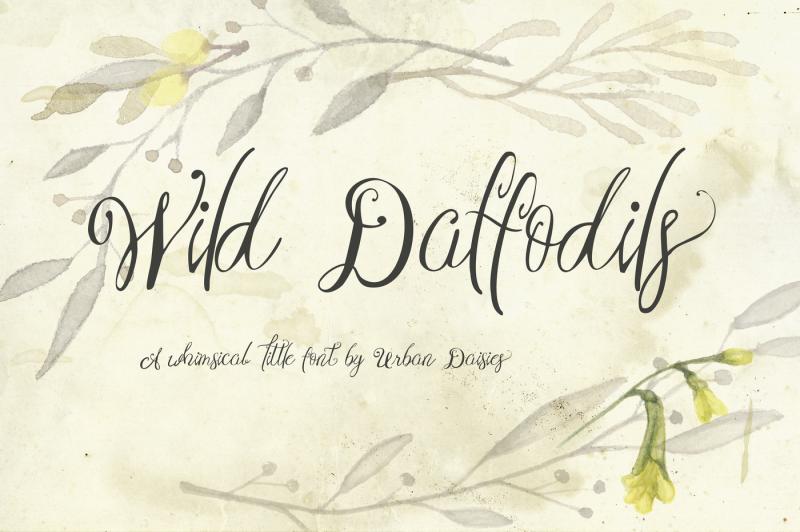 wild-daffodils