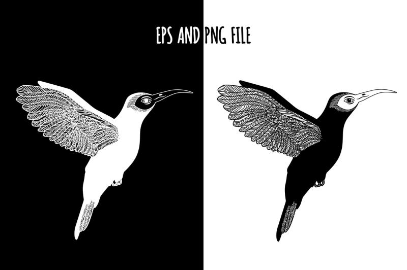 hummingbird-watercolor